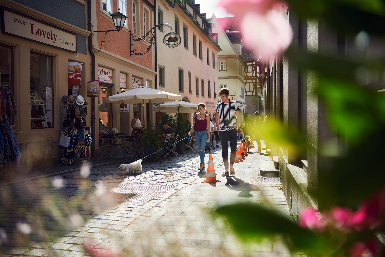 Junges Pärchen spaziert mit Hund durch Altstadt Rothenburg